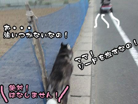 8_20110920210945.jpg