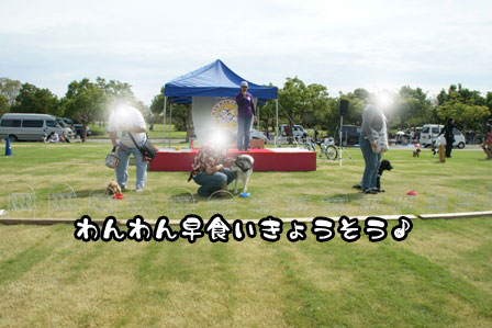 8_20111004210620.jpg