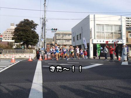 8_20120105193333.jpg