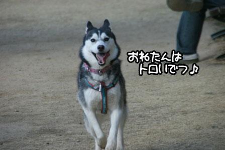 9_20110201193212.jpg