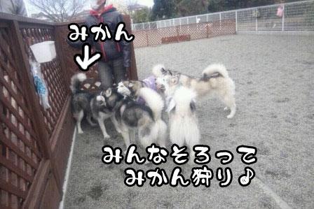 9_20110327200549.jpg