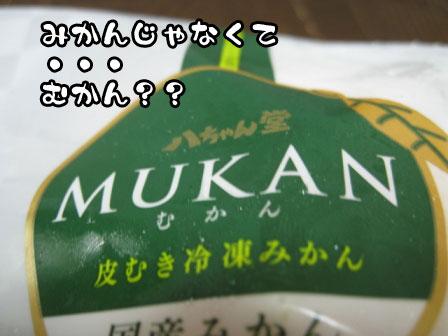 9_20110703224514.jpg