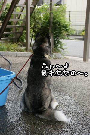 9_20110704210822.jpg