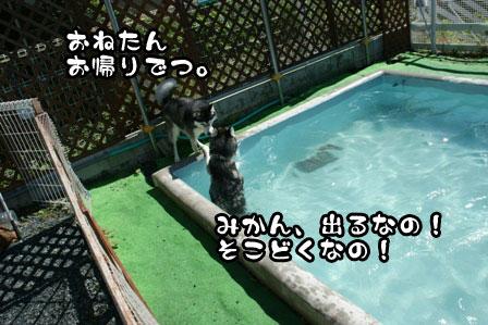 9_20110926211001.jpg