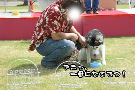 9_20111004210625.jpg