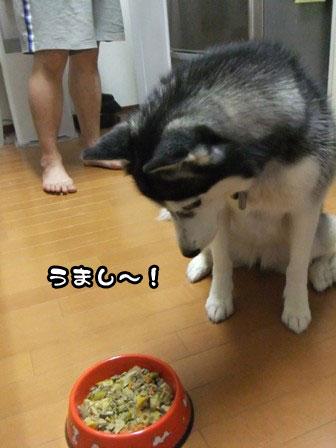 9_20111007204055.jpg
