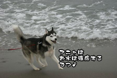 9_20111030220207.jpg