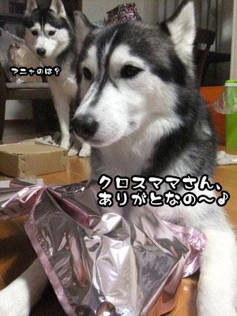 9_20111205214328.jpg