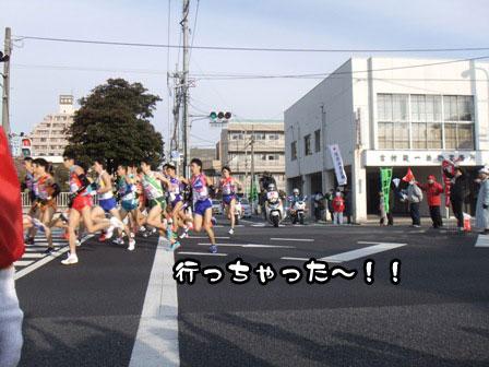 9_20120105193342.jpg