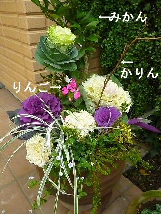 2011_1208ナッキー0005