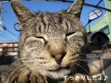 2012_0109ナッキー0089