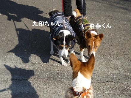 2012_0114ナッキー0063
