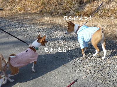 2012_0114ナッキー0050