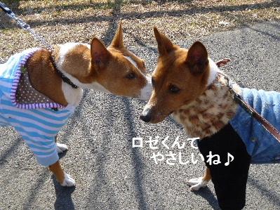 2012_0114ナッキー0047