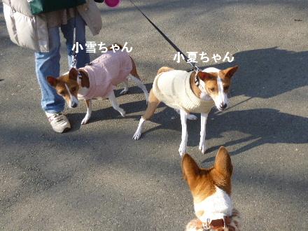 2012_0114ナッキー0064