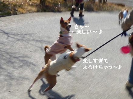 2012_0114ナッキー0072