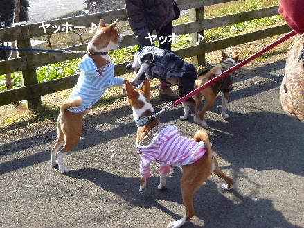 2012_0114ナッキー0073