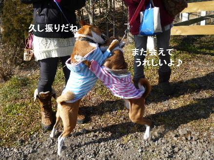 2012_0114ナッキー0070