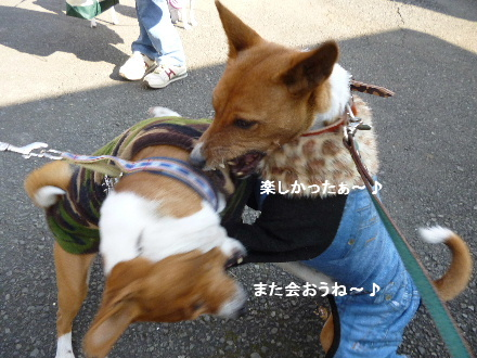 2012_0114ナッキー0077
