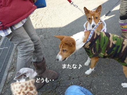 2012_0114ナッキー0055
