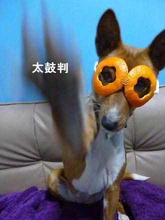 2012_0120ナッキー0019