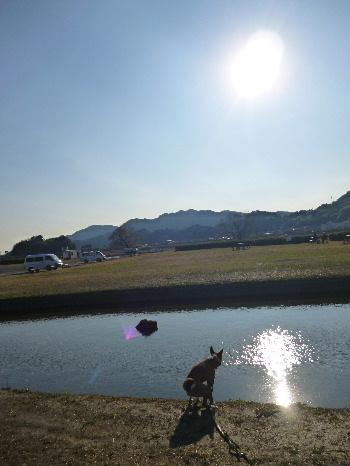 2012_0124ナッキー0005