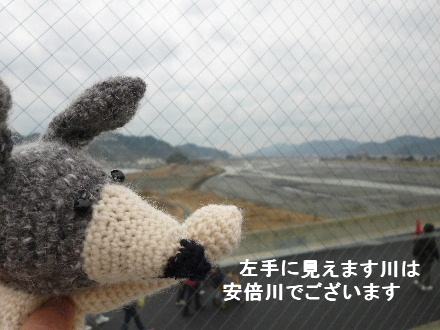 2012_0226ナッキー0049