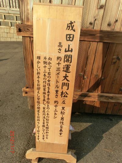 成田山201072小