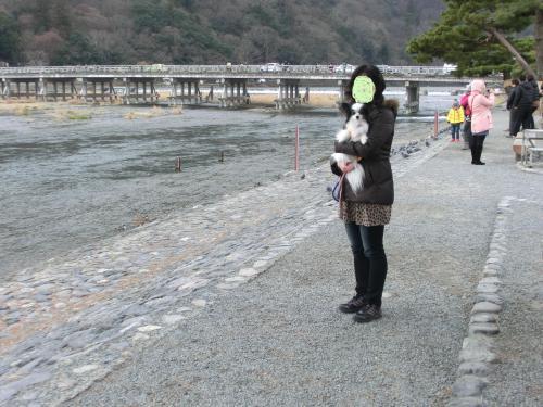 嵐山201294小