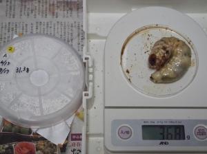 2013川西2番36.8
