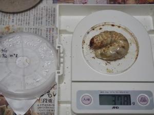2013川西2番37.8