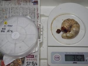 2013川西2番35.2