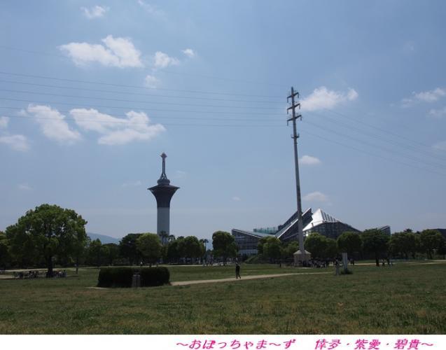 P5180499-1.jpg