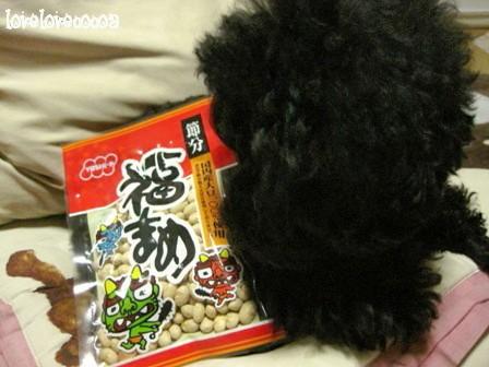 IMG_9867-cocoa.jpg