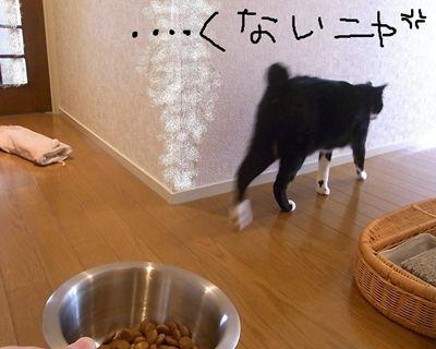 ken132_R_20130605131158.jpg