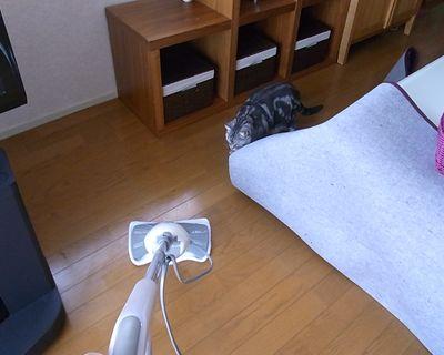 miku100_R.jpg