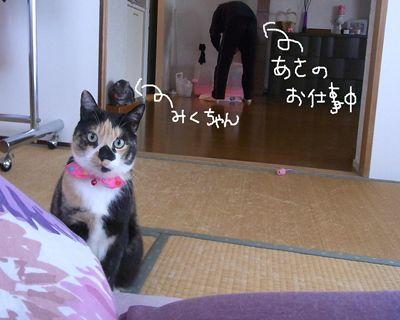mikuhana7_R.jpg