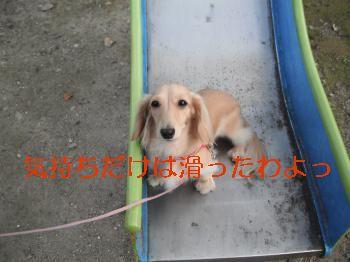 DSCF4518_convert_20111030224342.jpg
