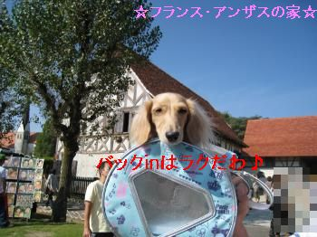 IMG_1217_convert_20111010222432.jpg
