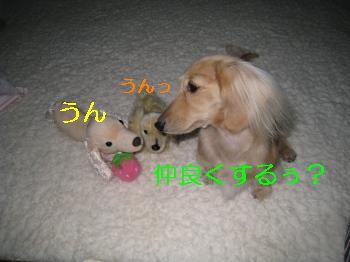 IMG_1305_convert_20111023211544.jpg
