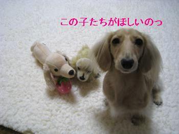 IMG_1308_convert_20111017224415.jpg