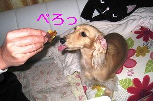 resize3357.jpg