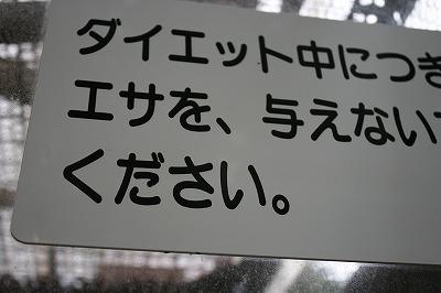 128_20100630212558.jpg