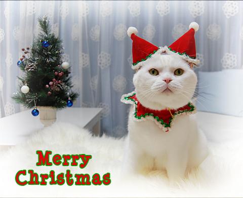 101224_クリスマス04