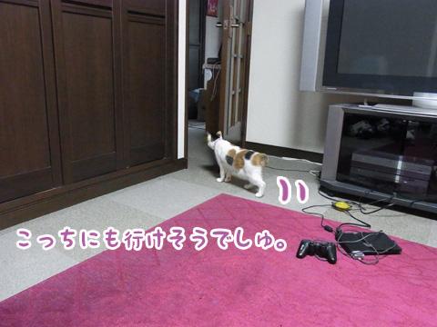 110324_ちはる03