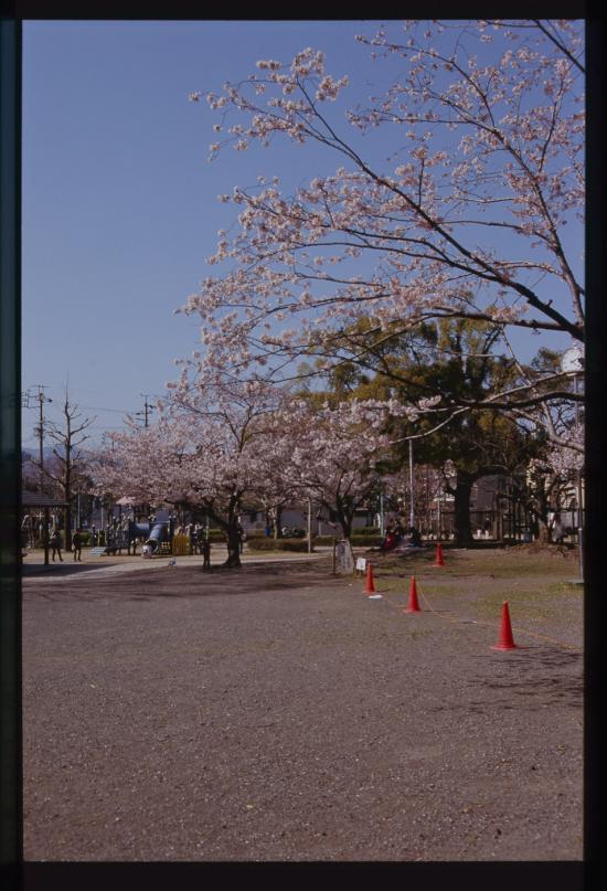 RA3-dn2-006-019_20111213212151.jpg