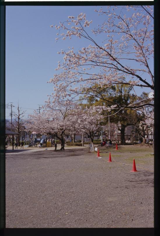 RA3-dn2-006-020.jpg