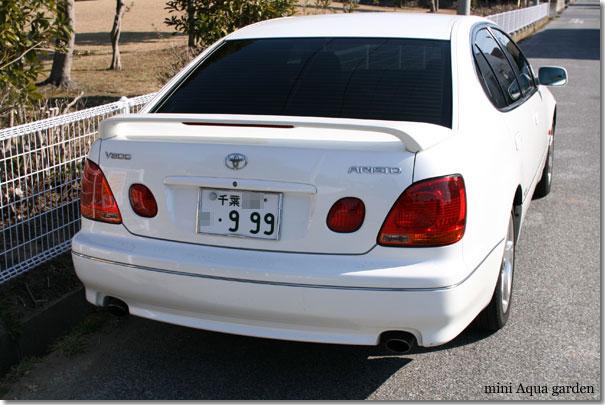 999_20100130_2.jpg