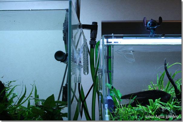 glass20100505.jpg