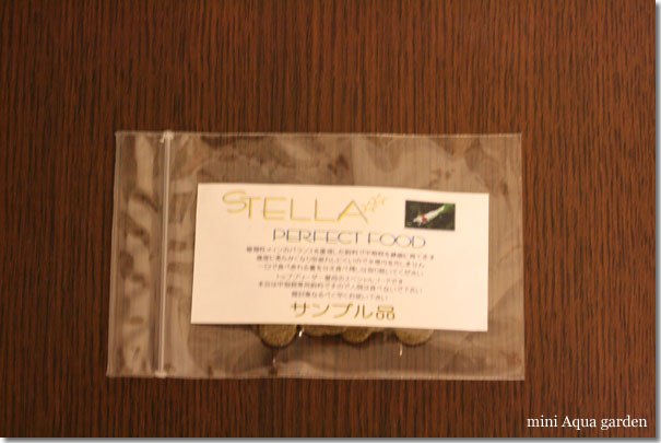 stella_20100220.jpg